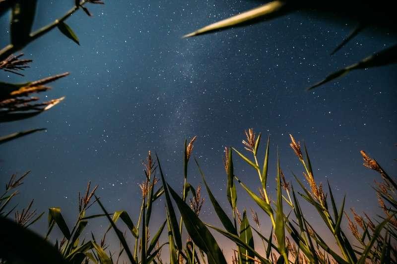 StarLac: star della compressione direttaStarLac: star della compressione diretta