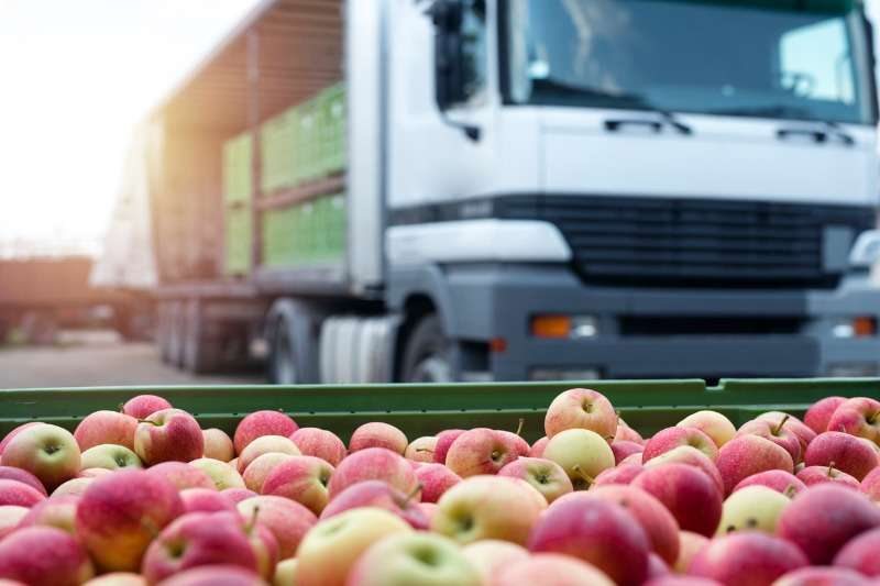 Importazione prodotti bioImportazione prodotti bio