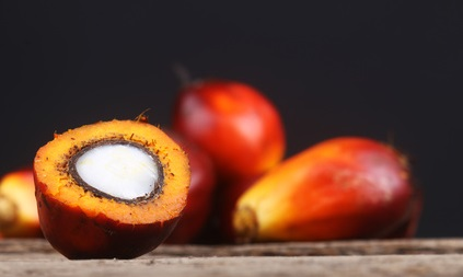 Sustainable palm oilSustainable palm oil